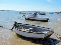 Playa de la Caleta4